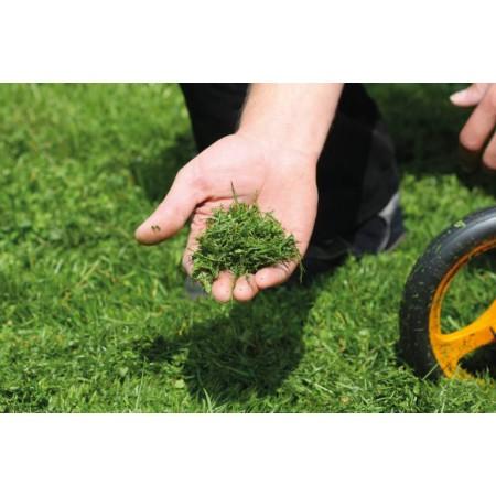 Tronçonneuse MSE210C-BQ 40R